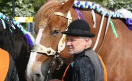 SVRZ Ringrijder en paard
