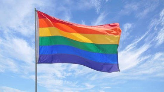 Regenboogvlag gehesen - SVRZ